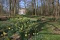 Landgoed en kasteel Hardenbroek in het voorjaar.jpg