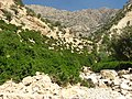 Landi Village Nature, طبیعت زیبای روستای لندی - panoramio.jpg