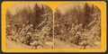 Landscape, Winter, from Robert N. Dennis collection of stereoscopic views 8.png