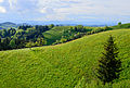 Landscape at Hergiswil near Willisau - Lucerne - Switzerland - 01.jpg