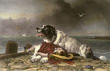 boatswain dog. a landseer newfoundland dog, the breed byron eulogized, painted by edwin henry landseer, 1802\u20131873. \ boatswain dog