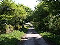 Lane to Liddaton Down - geograph.org.uk - 432551.jpg
