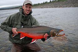 Un pêcheur avec un très beau mâle omble chevalier