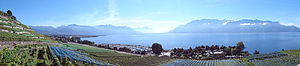 Lavaux VD SWITZERLAND.jpg