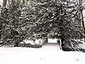 Le Parc de la Malmaison sous la neige - panoramio (12).jpg
