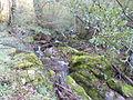 Le Ruisseau d'Audiernes en amont du pont du faubourg.JPG