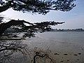 Le golfe du morbihan vu depuis le sentier cotier de port blanc - panoramio.jpg