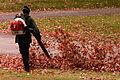 Leaf blower, Homewood Cemetery.jpg