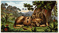 Leo et mus.jpg