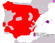 Granada Hare range(red - native, pink - introduced, violet - origin uncertain)
