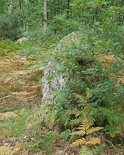 Les Baux Sainte Croix - Menhirs 1&2.jpg