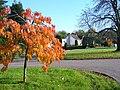 Levylsdene, Merrow. - geograph.org.uk - 600643.jpg