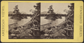 Little Chicken Island, Lake George, from Robert N. Dennis collection of stereoscopic views 2.png