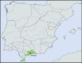 Location map Taifa of Málaga.png
