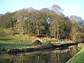 Lodge Wood - geograph.org.uk - 644472.jpg