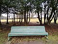 Long shot of the bench (OpenBenches 4300-1).jpg