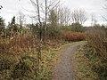 Longridge 2nd railway station (site), Lothian (geograph 5206553).jpg