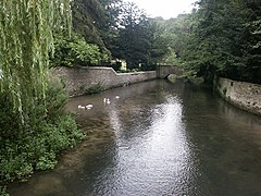 Looking downstream on the Coln, Ablington - geograph.org.uk - 231296.jpg
