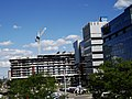 Looking east at Aqualina, at Queen's Quay, from the grassy knoll at Sugar Beach, 2016-08-07 (2).JPG - panoramio.jpg