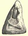 Lough-Scur Stone Mould.png