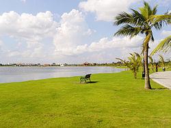 Lush green grass along the lake.jpg