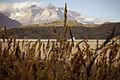 Más de las Torres del Paine - Flickr - Felipe Del Valle Batalla.jpg