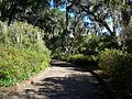 Maclay Gardens SP path02.jpg