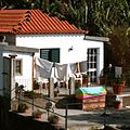 Madeira *** (8152500036).jpg