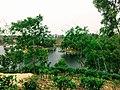 Madhobpur Lake, Moulovibazar.jpg