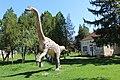Magyarosaurus dacus.jpg