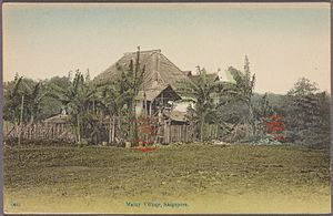 Malay Singaporeans - A traditional Malay kampung or village in Singapore. 1907.