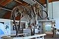 Mammoth (16025409139).jpg