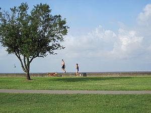 Mandeville, Louisiana. Joggers along the Lakefront