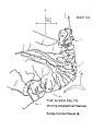 Map 3B Delta.jpg