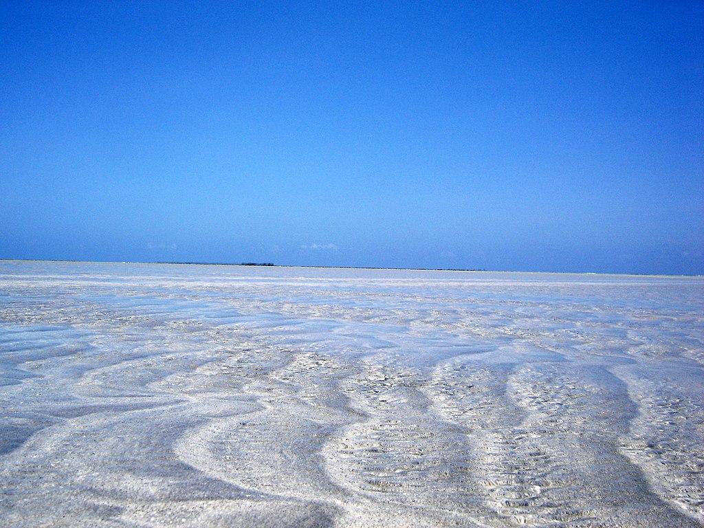 Águas cristalinas em Maragogi.