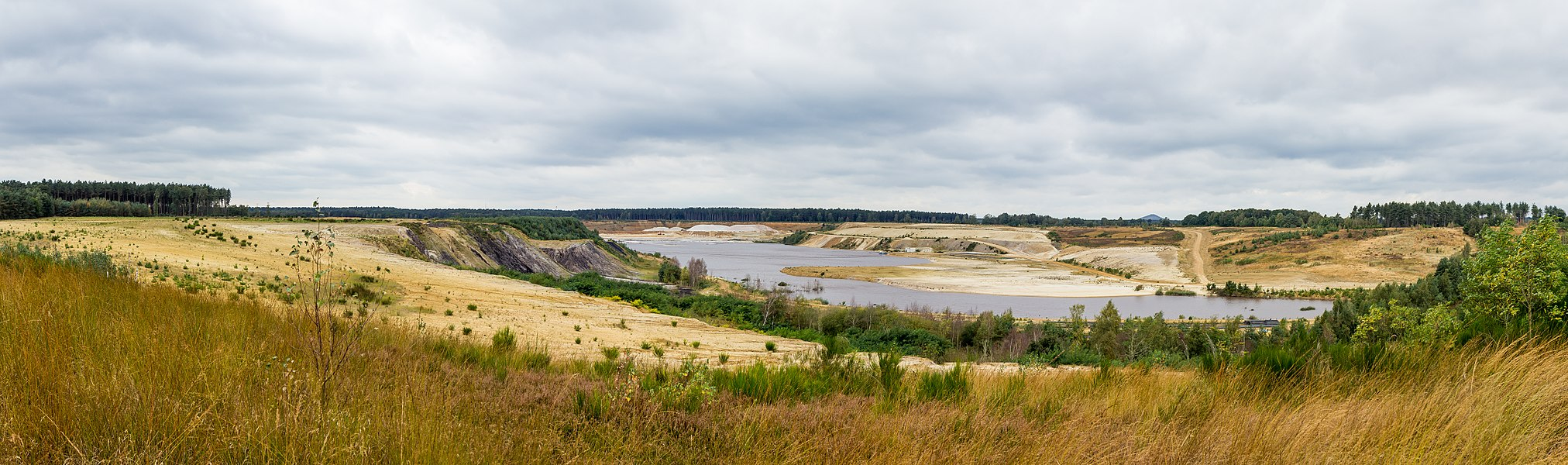 Mechelse Heide, Zandgroeve. Nationalspark Hoge Kempen