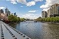 Melbourne (AU), Yarra River -- 2019 -- 1431.jpg