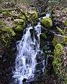 Memaloose State Park II - panoramio.jpg