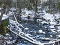 Middle Fork Tuolumne River near Evergreen Lodge.jpg