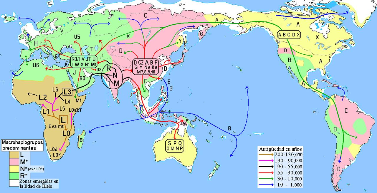 Mappa delle migrazioni dell'uomo secondo gli Aplogruppi e i Macroaplogruppi mitocondriali