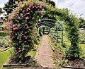 Mills-Rose-Garden-2018-06a.jpg