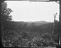 Missionary Ridge, Tenn (4153694602).jpg