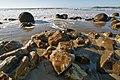 Moeraki Beach Otago NZ. (8137773631).jpg