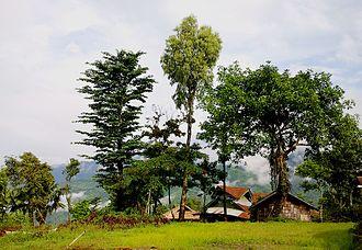 Mon district - Shangnyu Village, Mon district, Nagaland