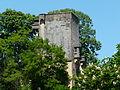 Montignac (24) château (1).JPG