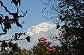 Mount Dhaulagiri Ghorepaani 5.jpg