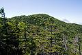 Mt.Kitaokusenjodake 05.jpg