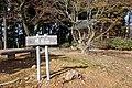 Mt Kariyasu summit.JPG