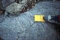 Mt Searle (N shoulder) diorite.jpg