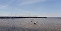 Muelle de Jurata, Península de Hel, Polonia, 2013-05-24, DD 13.jpg